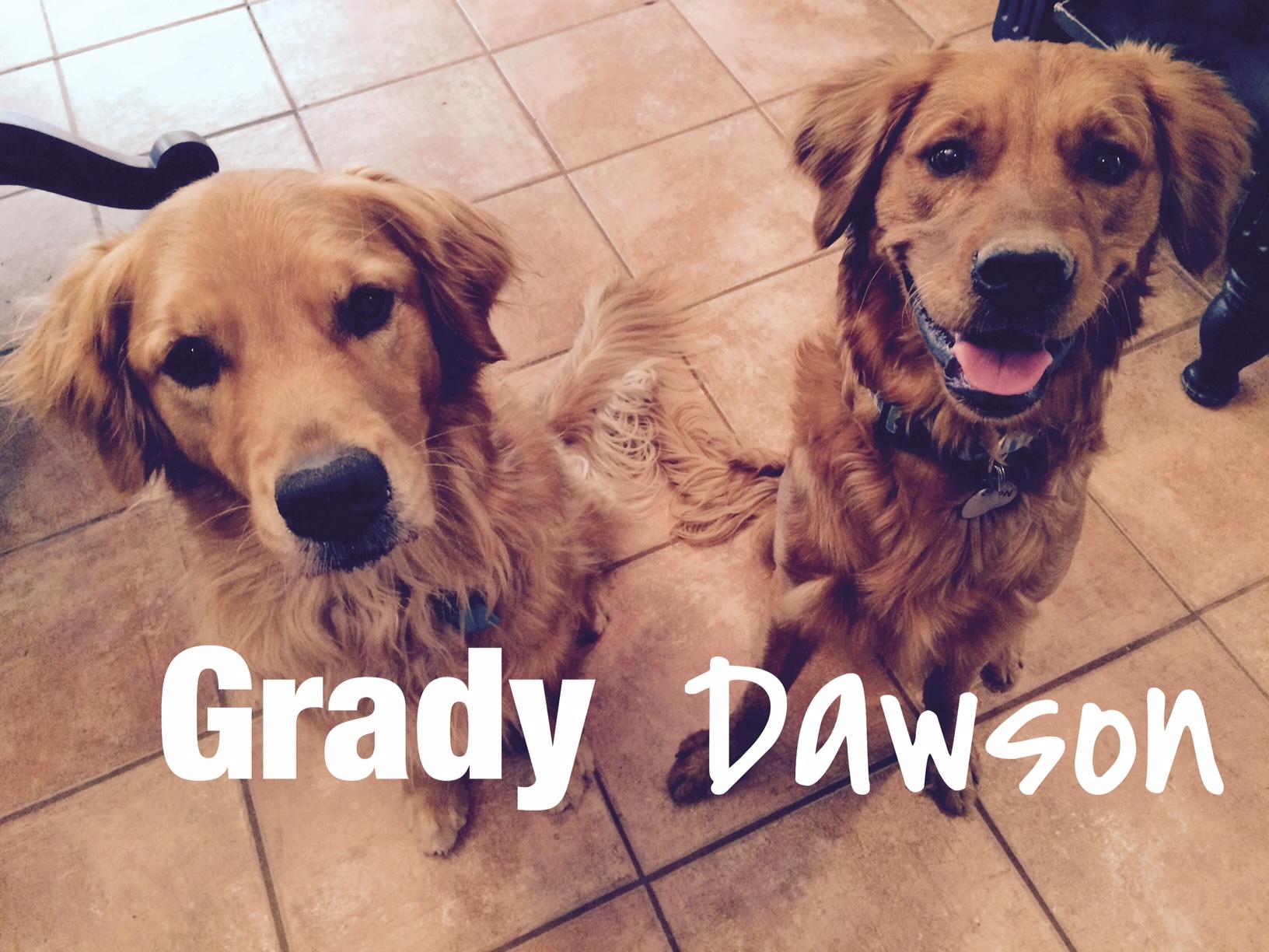 Dawson and Grady