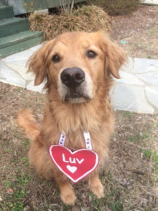 "Grady says ""Happy Valentine's Day""!"